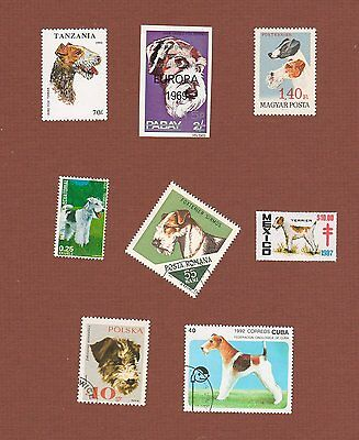 Wirehaired Fox Terrier dog postage stamps and seal, set of 8