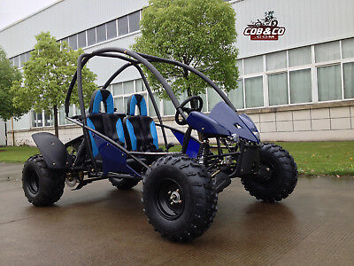 200cc GoKart Dune Buggy Raptor TWIN ATV Teen|Adult Semi Auto Roll Cage