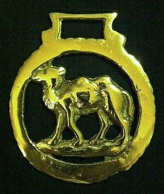 SMALL vintage CAMEL ROUND FRAME Horse Harness Brass from England WOW YOUR WALLS!