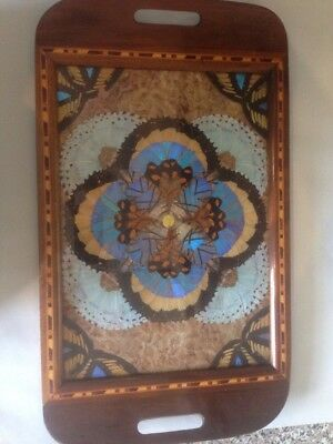 Vintage Butterfly Wing Inlaid Tray