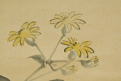 Hanging Scroll Japanese Painting lotus Picture Old Pic Japan Antique 景文 松村 b287