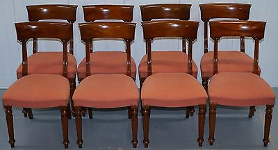 Set Of Eight Original Harrods London Frank Hudson & Son Mahogany Dining Chairs 8