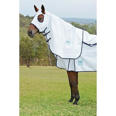 KOOL COAT Classic Horse Hood in White/Navy in Mini Size