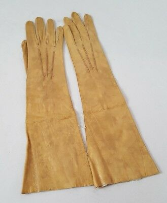 Antique Vintage Long Tan Beigh Two Button Leather Opera Gloves 7 / 19 German