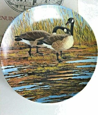 Decorative Plate Courtship Canadian Geese Hard Fired Dominion China Decor Home