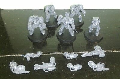 Warhammer 40k Space Marines Blood Angels Terminators with magnetized weapons