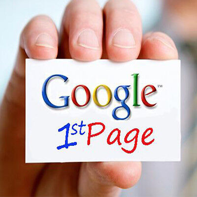 AdSense Approved Micro Niche Website With Google First Page Ranking
