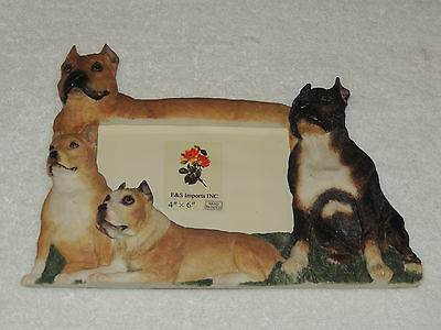 Pit Bull Picture Frame E & S Imports 35257-53 -  4x6 - New