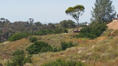 San Diego, CA - HUGE ocean view homesite lot within 5 miles of Downtown & Beach