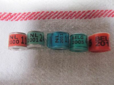 Racing Pigeon Bands / Rings - Imports