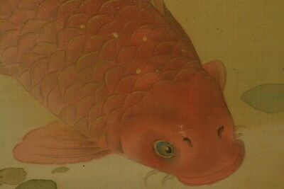 Hanging Scroll Japanese Painting Carp Water strider Japan art ink Antique a458