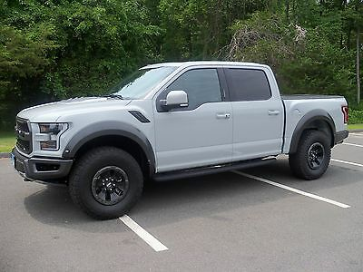 2017 Ford F-150 Raptor AVALANCHE GRAY!!!!