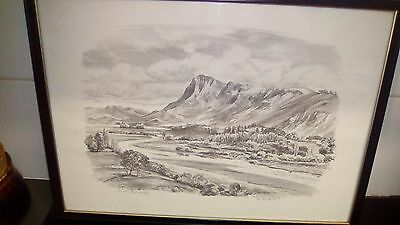 peter arnold pencil drawing lithograph ,hand signed