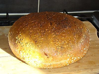 Authentic Sourdough Bread Starter From San Francisco (ready to use)