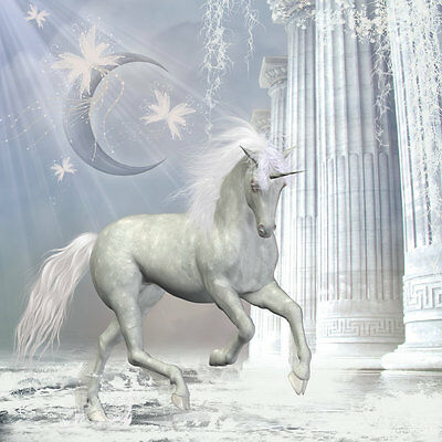 Modern Home wall art Decor Horse unicorn painting picture Printed on canvas r045