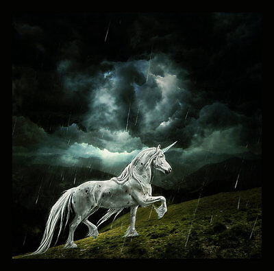 Modern Home wall art Decor Horse unicorn painting picture Printed on canvas r046