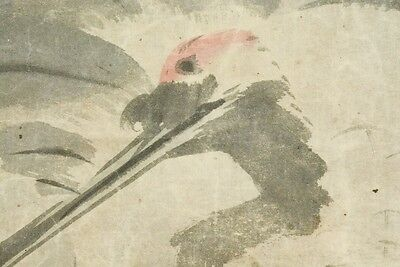 """Hanging Scroll 74.6"""" Japanese Painting Crane Picture 文晁 谷 Japan Antique Old b666"""