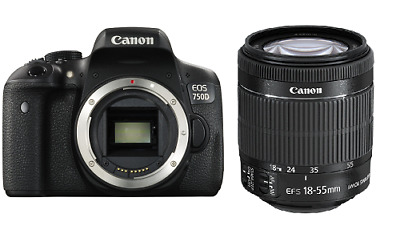 Canon EOS 750D Gehäuse + Canon EF-S 18-55mm f3.5-5.6 IS STM (White Box)