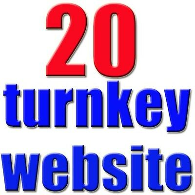 20.Profitable Turnkey Website For Sale 03 Niche Blogs - M.Money Selling Sites