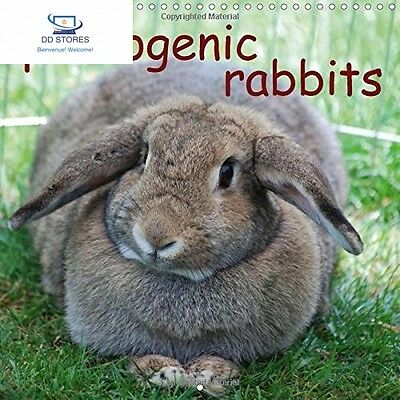 Photogenic Rabbits 2017: An Amusing Planner About Our Favorite Pets...