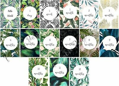 Leaf Print Baby Milestone Cards - Pack of 15 - Baby Shower Gift