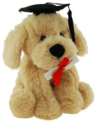 *new* Graduation Dog With Hat & Scroll Puppy School Soft Plush Toy 18Cm