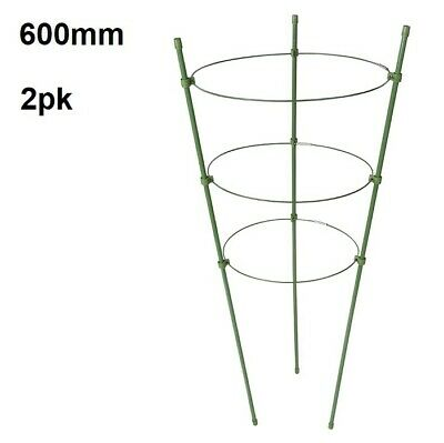 3 Ring Garden Plant Support 600mm High Climbing Plant Tie Support LRG Pack of 3