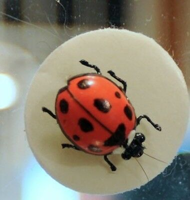 Realistic Lady Bug fly tied by Bob Mead with signed card