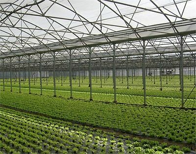 Greenhouse Film 4.0M x 150umx 50M Clear Plastic Covering Domestic Commercial
