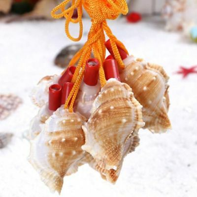 Creative Natural Souvenirs Shell Conch  Whistle Toys Gift Survival Tool