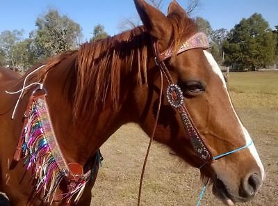 Showman ® metallic rainbow paisley  LEATHER WESTERN BRIDLE AND BREASTPLATE SET