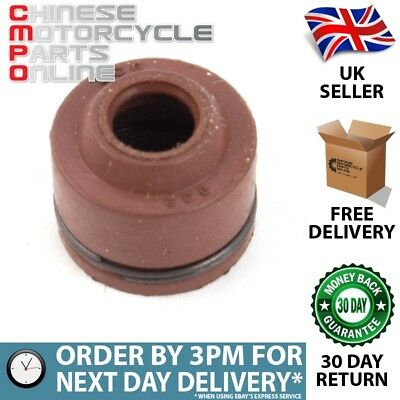 50/100/125cc Valve Stem Oil Seal for FT125T-27-E4 (VLVGDSL014)