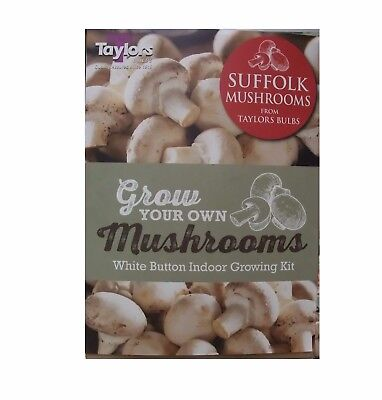 Large White Button Mushroom Growing Kit by Taylors Bulbs - FREE P&P