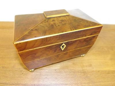 Antique Georgian Yew And Box Wood Tea Caddy. 1780's