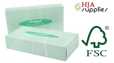 Cloudsoft Luxury White 2Ply Facial Tissues 100 Sheets per box, Case of 24 boxes