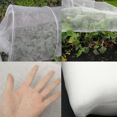 2.4m Wide Insect Net Garden Veg Mesh Orchard Crop Anti Bird Net Protect Cover