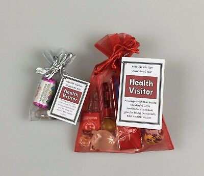 Health Visitor Survival Kit  (Novelty Work Colleague Thank you Christmas Gift )