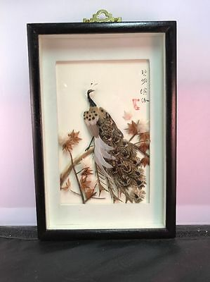 Vintage Chinese Feather Art Shadowbox Peacock in Tree Signed by Artist