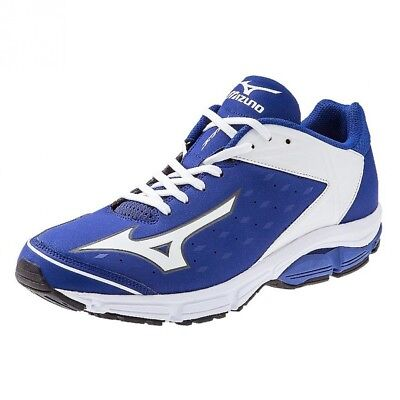 (15 D(M) US, Royal-White) - Mizuno Usa Mens Men's Wave Swagger 2 Trainer