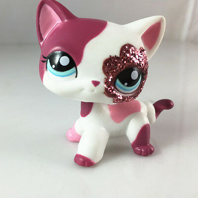 In Hand  Littlest Pet Shop Rare Short Hair Pink  Cat with blue eyes lps666