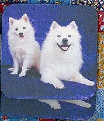 AMERICAN ESKIMO Rubber Backed Coasters #0951