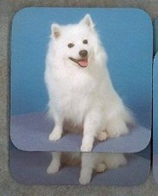 AMERICAN ESKIMO Rubber Backed Coasters #0667