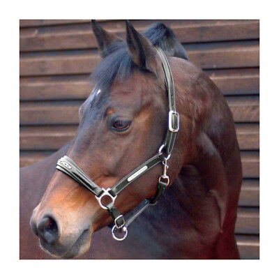 Caldene Signature Premium Leather Diamante Horse Headcollar
