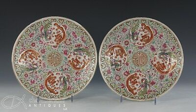 Pair Of Antique Chinese Porcelain Plates With Dragons - Guangxu