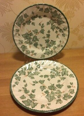 "British Home Stores BHS Country Vine Pair 10 1/2"" 26.5 cm Dinner Plates"