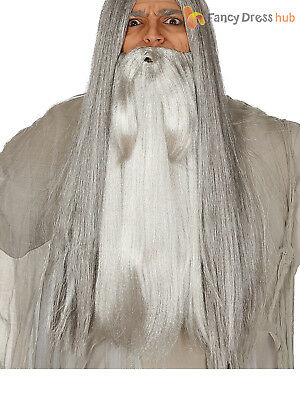 Mens Wizard Grey Long Beard Halloween Fancy Dress Costume Accessory Gandalf