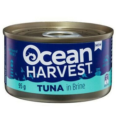 Ocean Harvest Tuna In Brine 95gm x 24