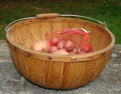 Sturdy Round Wooden Basket Trug with Bail Swing Handle for Gathering / Storage