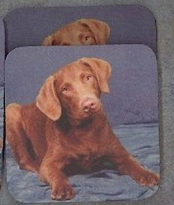 CHESAPEKE BAY RETRIEVER PUPPY Rubber Backed Coasters #0679
