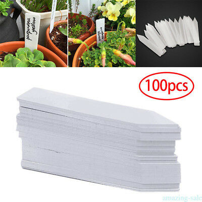 Plant Markers Plastic Plants Gardening Label Bonsai Labeling Signs White 100pcs